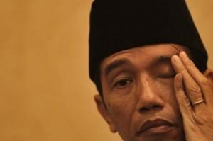 Jokowi 1 Tahun
