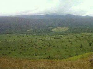 Lembah Perkebunan Sawit